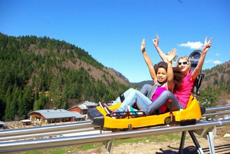 Schlitte Mountain luge d'été à 2 minutes